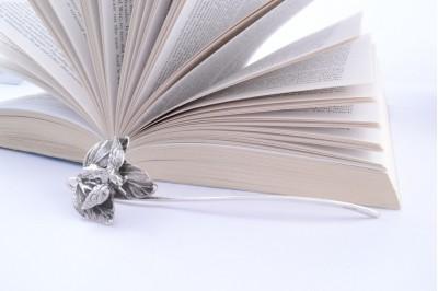 Obiecte argint masiv cadou semn de carte